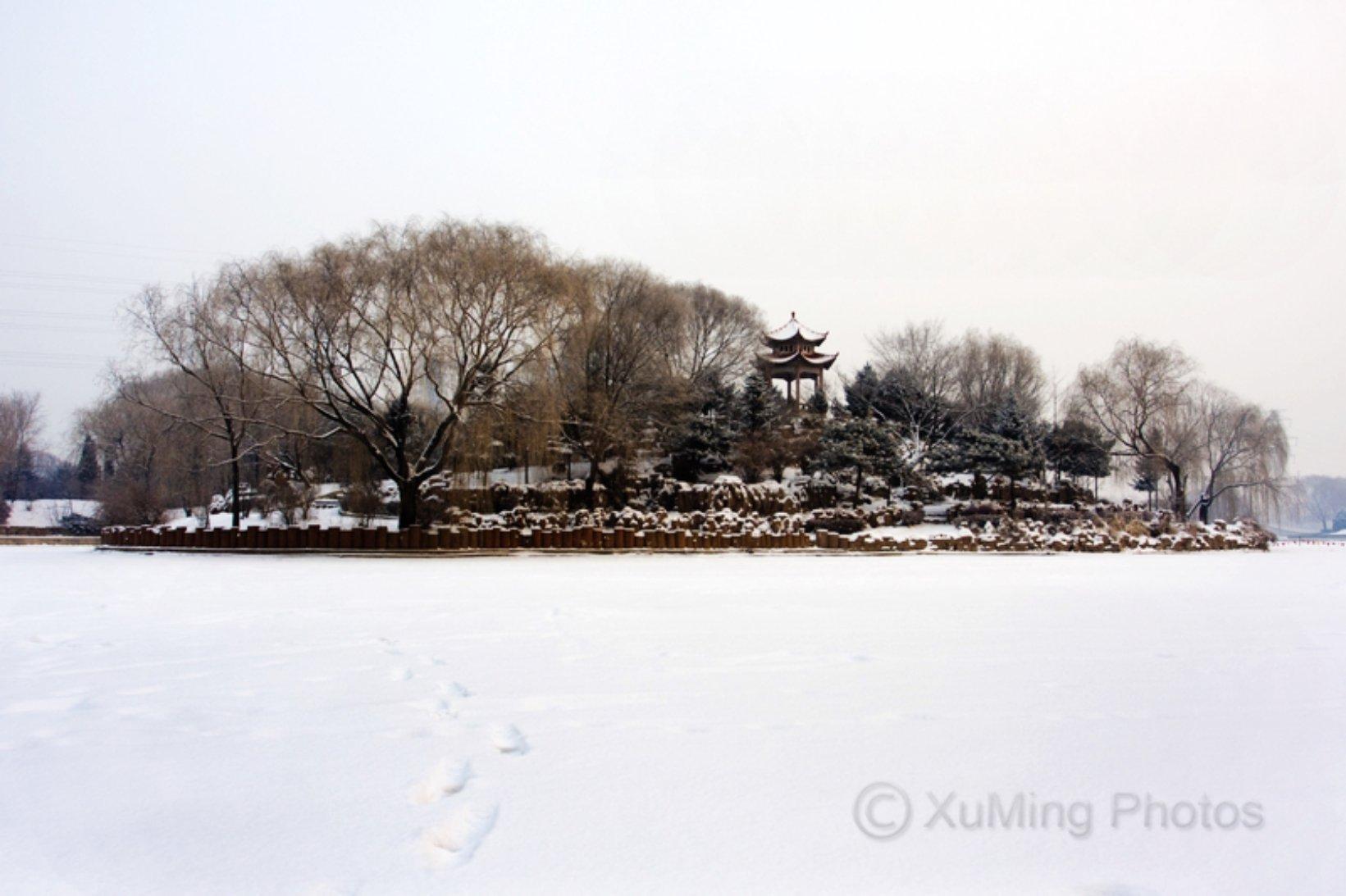 辽宁省葫芦岛市龙港区双龙街道龙前街16-6号楼天气预报