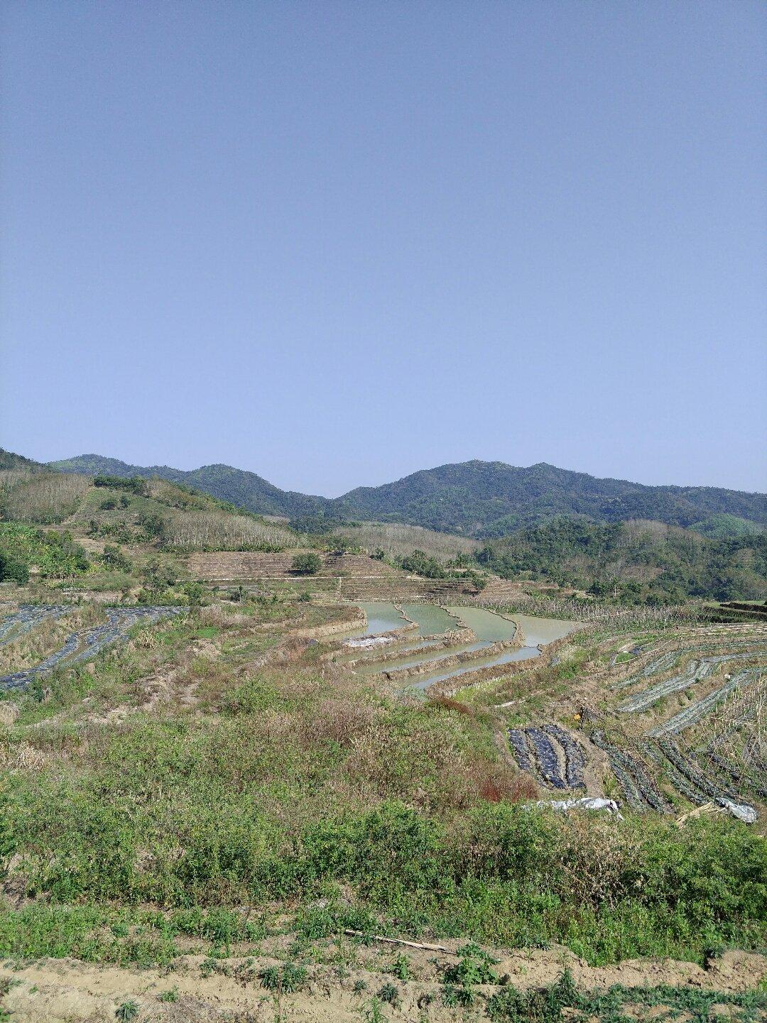 海南省海南省五指山市065乡道靠近毛栈村天气预报