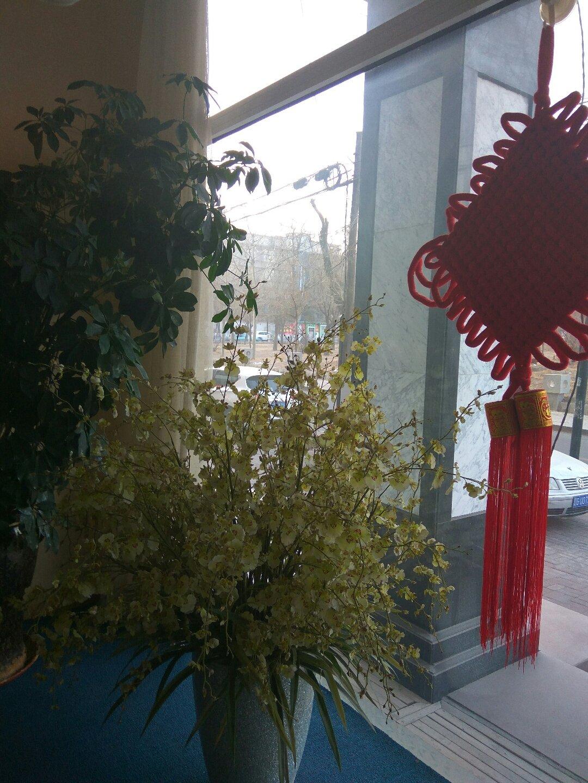 辽宁省锦州市古塔区敬业街道汉口街46号天气预报