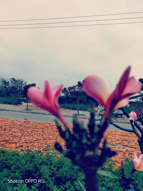 海南省海南省乐东黎族自治县023乡道靠近山海湾温泉家园3区天气预报