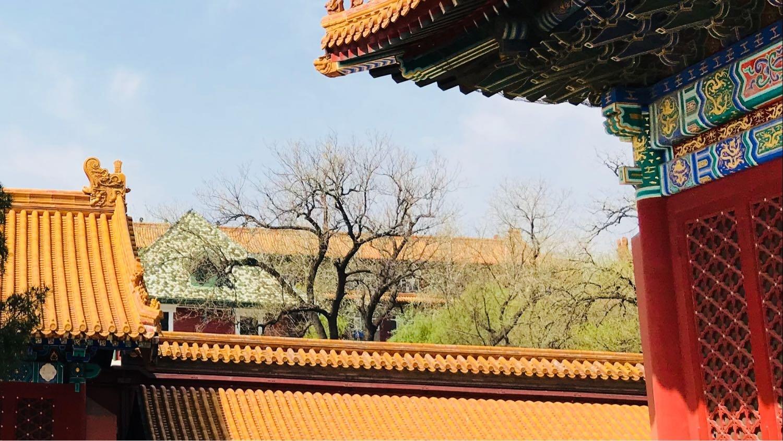 BeijingDongchengNo.4 Jingshan Front Street Gugongbowu Yuannei天气预报