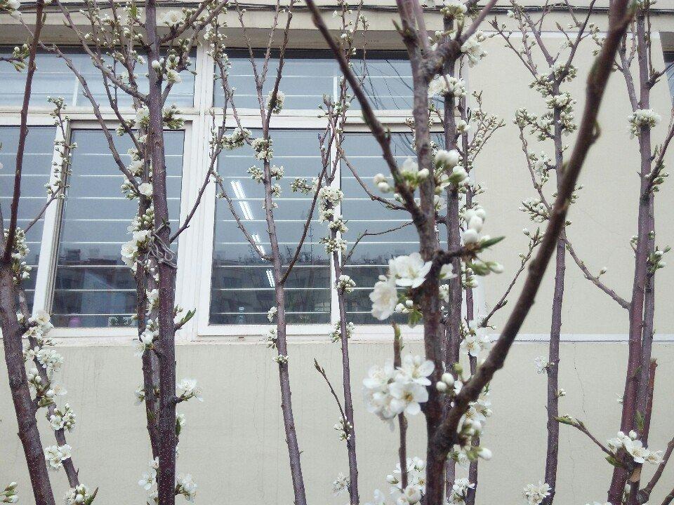 辽宁省锦州市凌河区解放路靠近锦州银行(大学生支行)天气预报