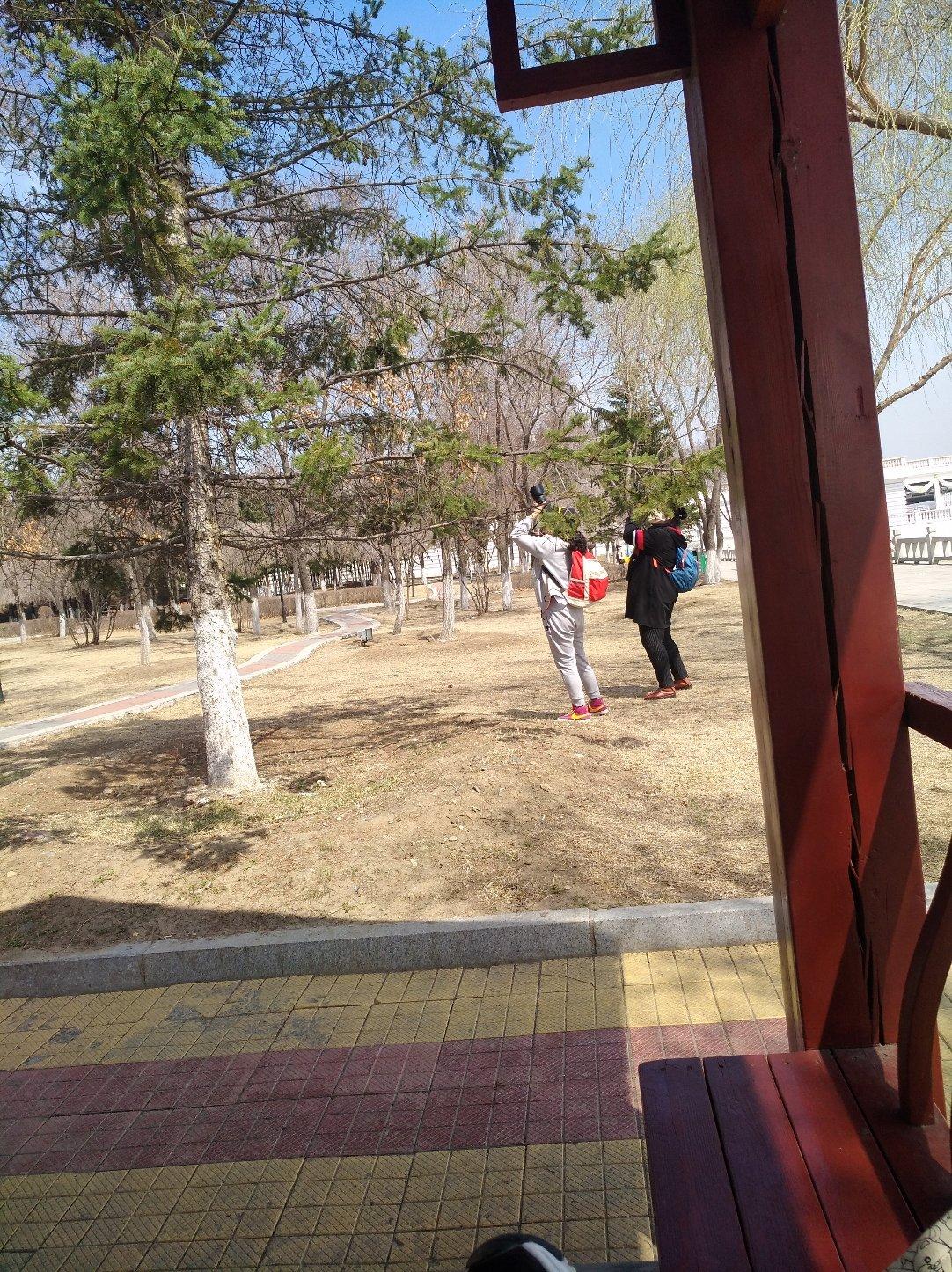 黑龙江省牡丹江市西安区西三条路靠近牡丹江市中级人民法院天气预报