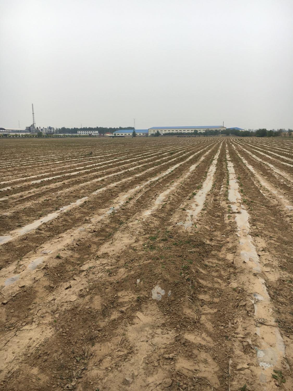 锦州市义县天气预报