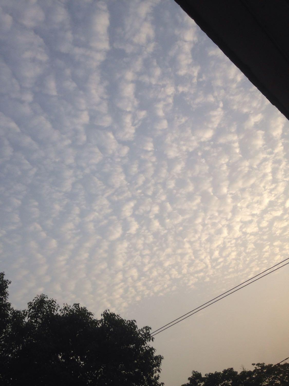 安庆市桐城市天气预报
