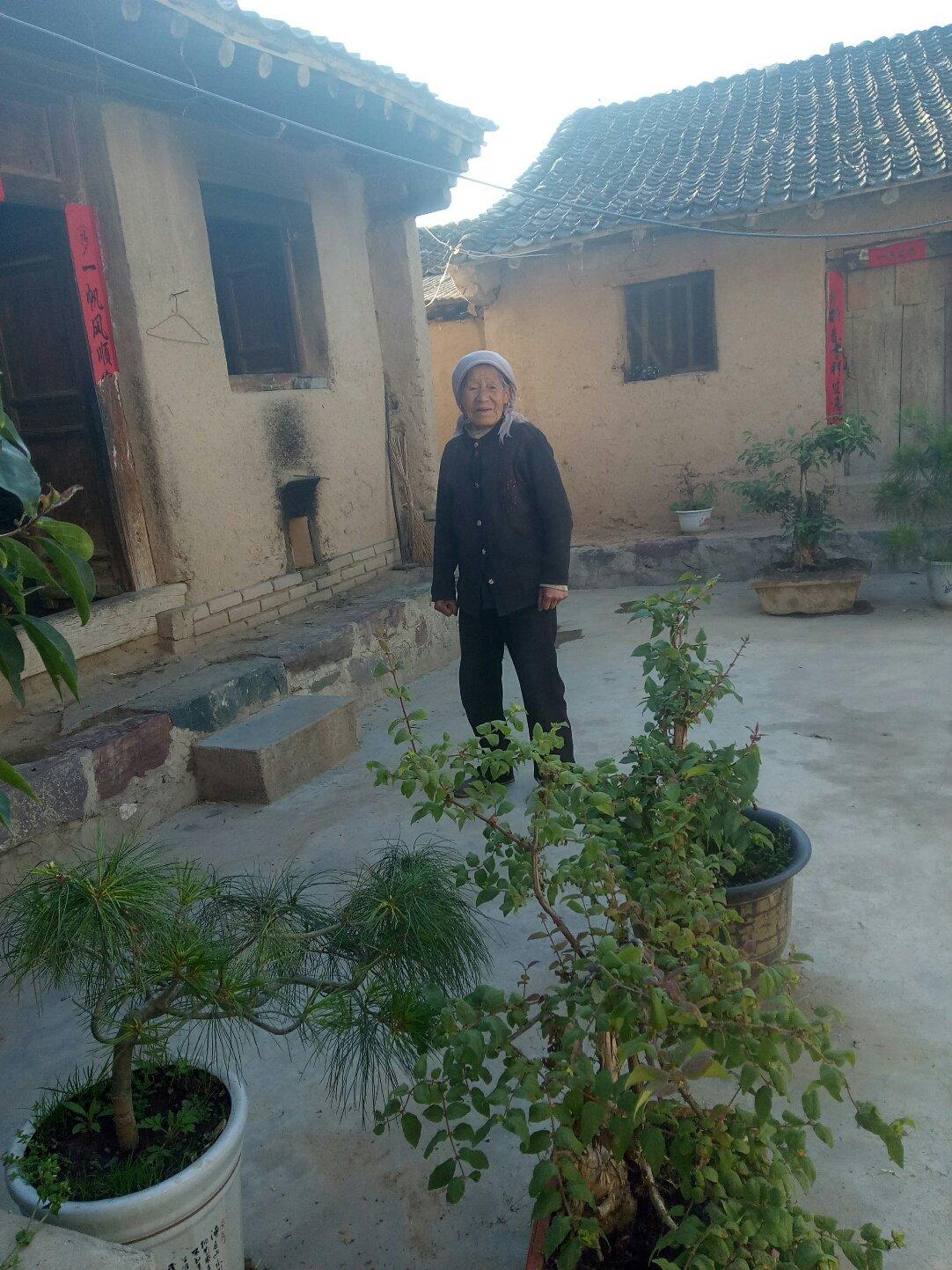 甘肃省天水市武山县Z165靠近庙跟前天气预报