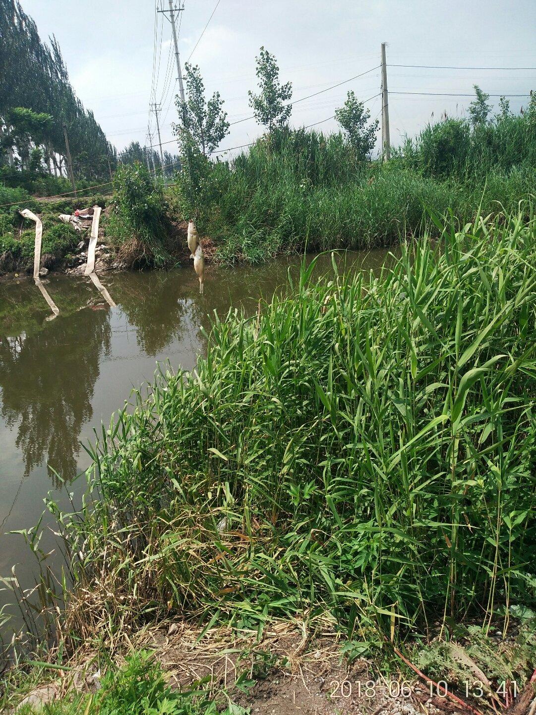 辽宁省营口市老边区柳树镇前小平山天气预报