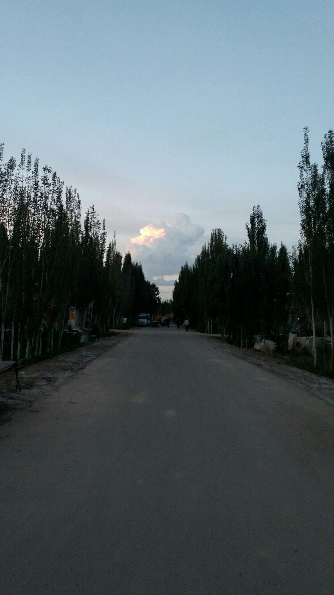 新疆维吾尔自治区阿克苏地区阿克苏市011县道靠近沃吐孜盖兰木天气预报