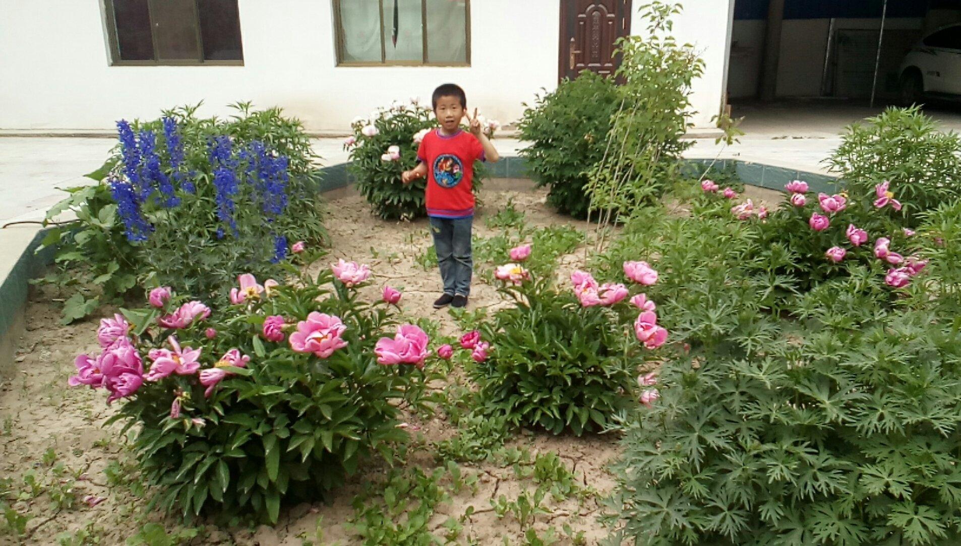 甘肃省张掖市山丹县210县道靠近城南村天气预报
