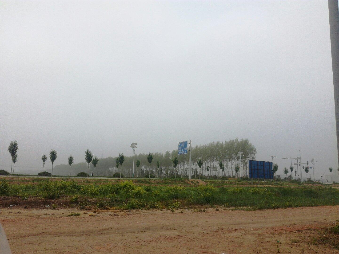 黑龙江省大庆市大同区萨大南路靠近西双榆树天气预报