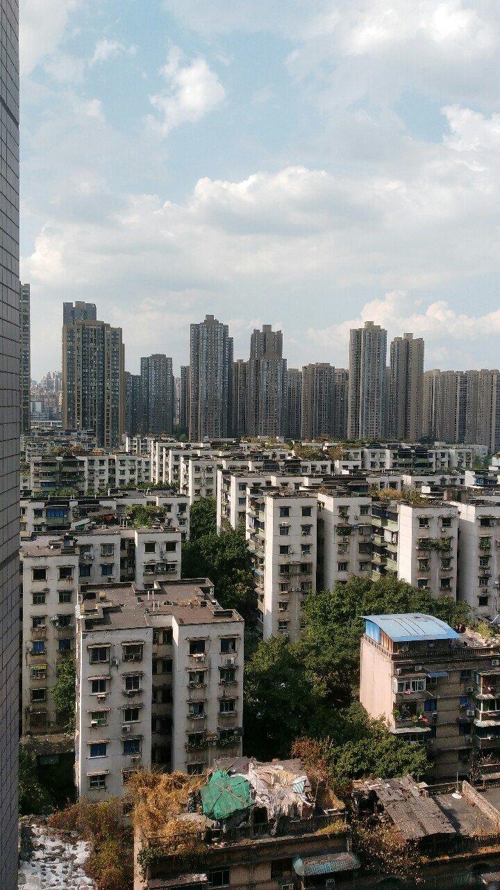重庆市九龙坡区直港大道靠近重庆日报(直港大道店)天气预报