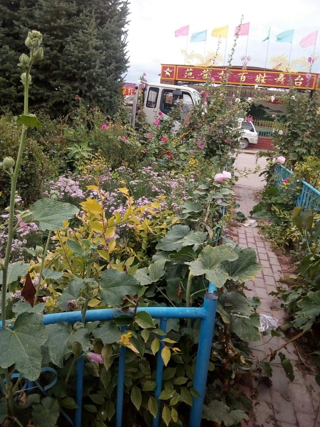 甘肃省张掖市山丹县210县道靠近西沟沿天气预报