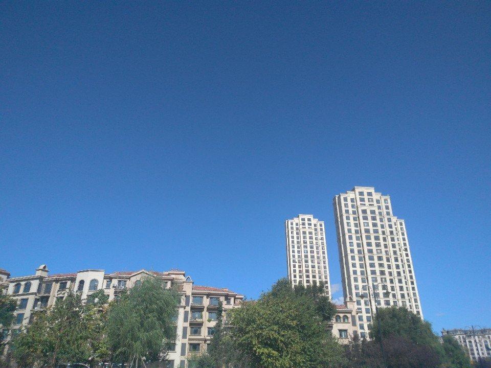 黑龙江省大庆市让胡路区和安东街靠近创业城1区天气预报