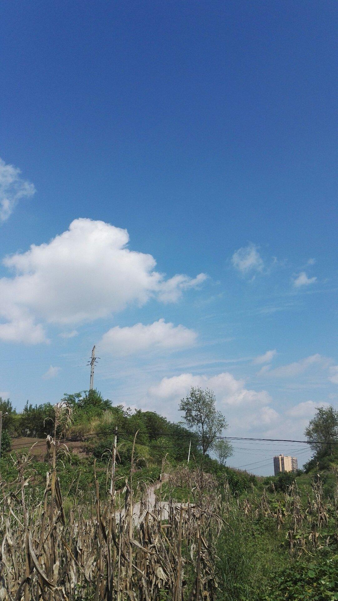 重庆市合川区梓桥街靠近合川聚仁医院天气预报