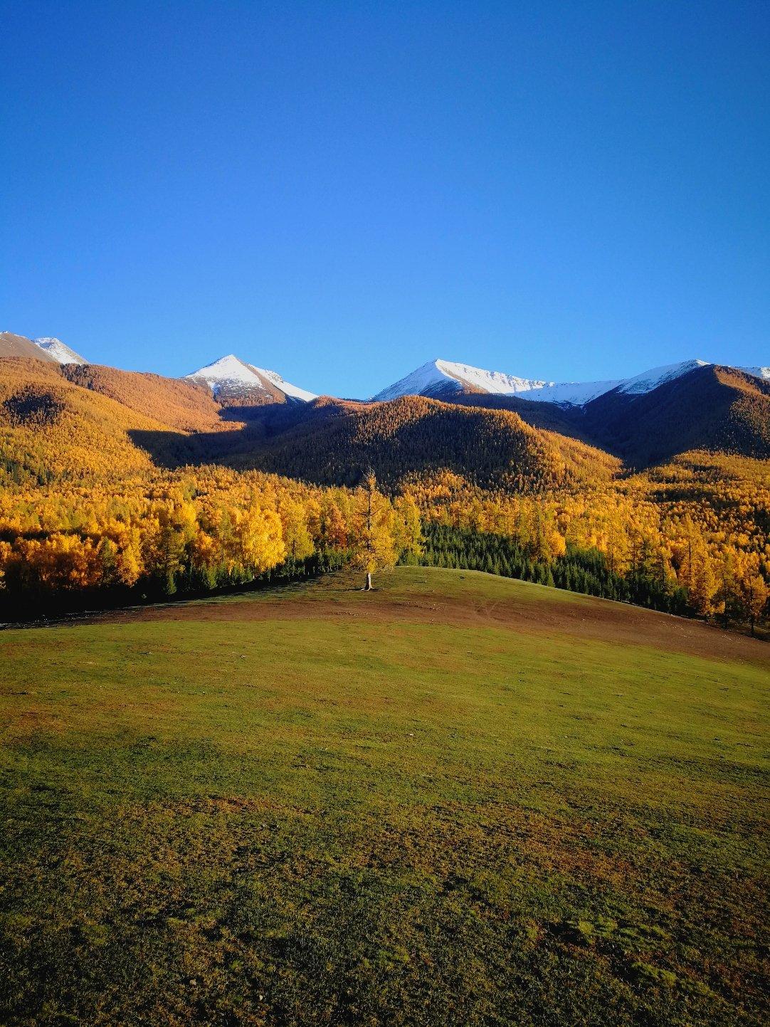 新疆维吾尔自治区阿勒泰地区哈巴河县铁热克提乡白喀段天气预报