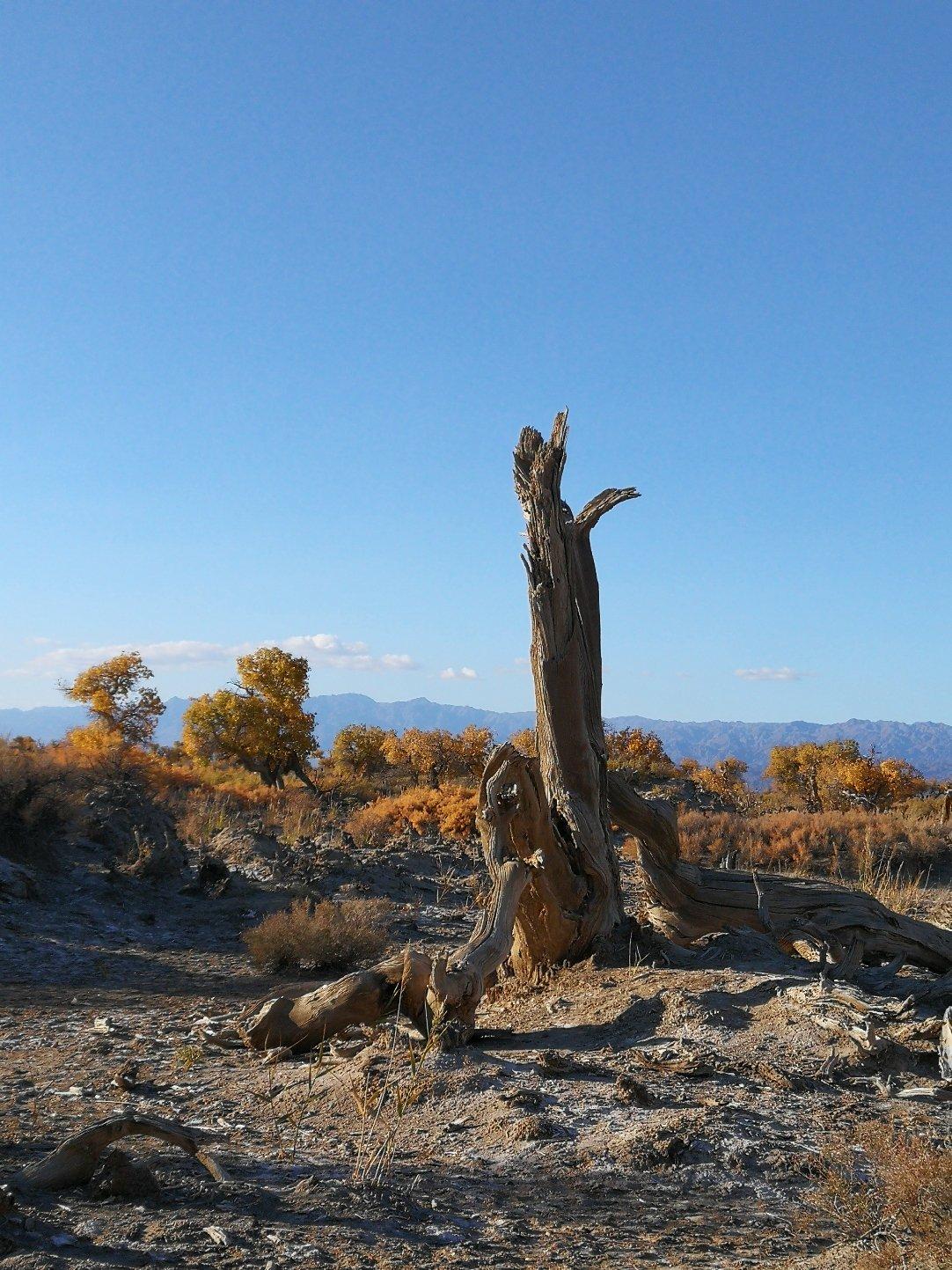 新疆维吾尔自治区昌吉回族自治州木垒哈萨克自治县192县道靠近世纪酒店天气预报