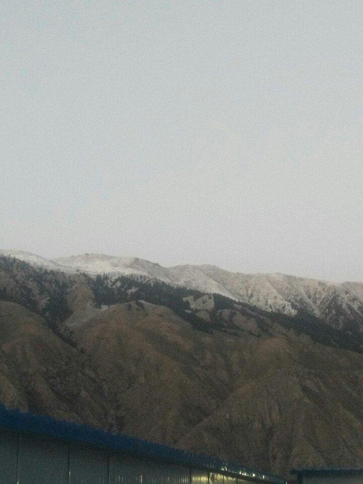 新疆维吾尔自治区阿克苏地区拜城县种羊场琼阿尔帕连天气预报