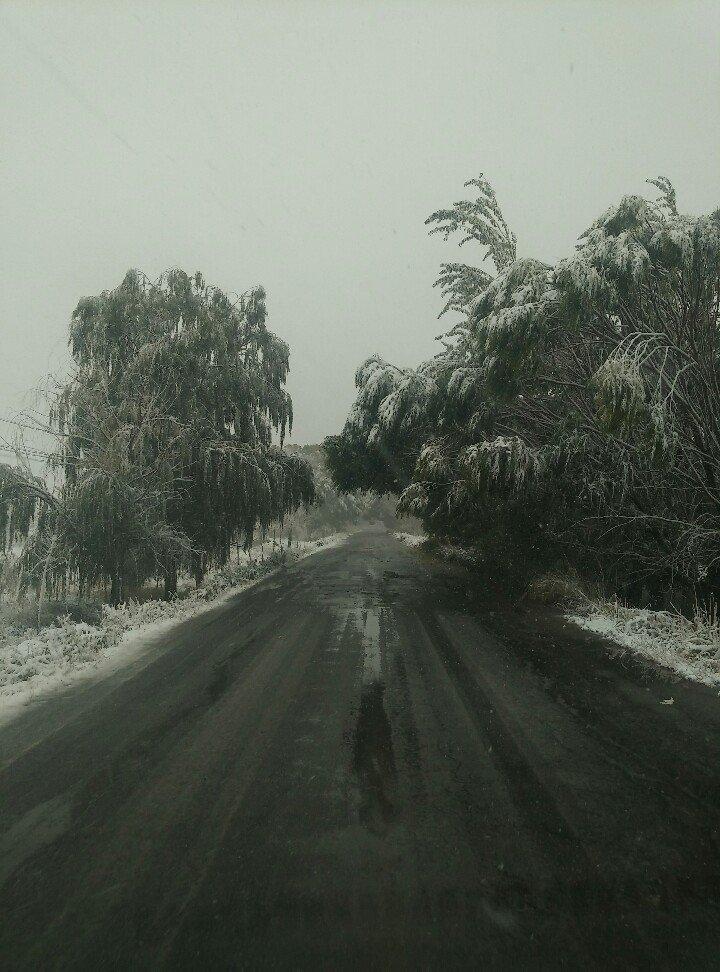 新疆焉耆王家庄牧场天气预报