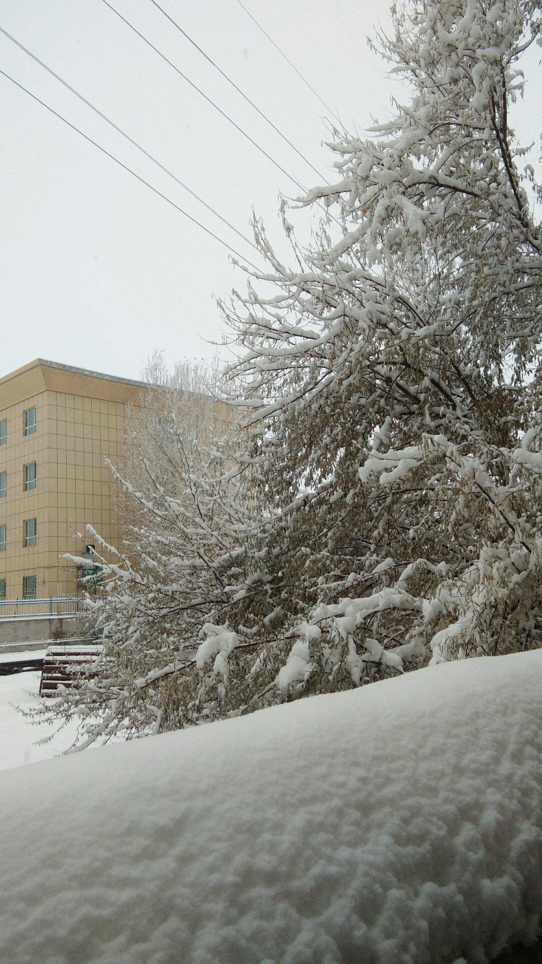 新疆维吾尔自治区阿勒泰地区青河县阿热勒托别镇228省道天气预报