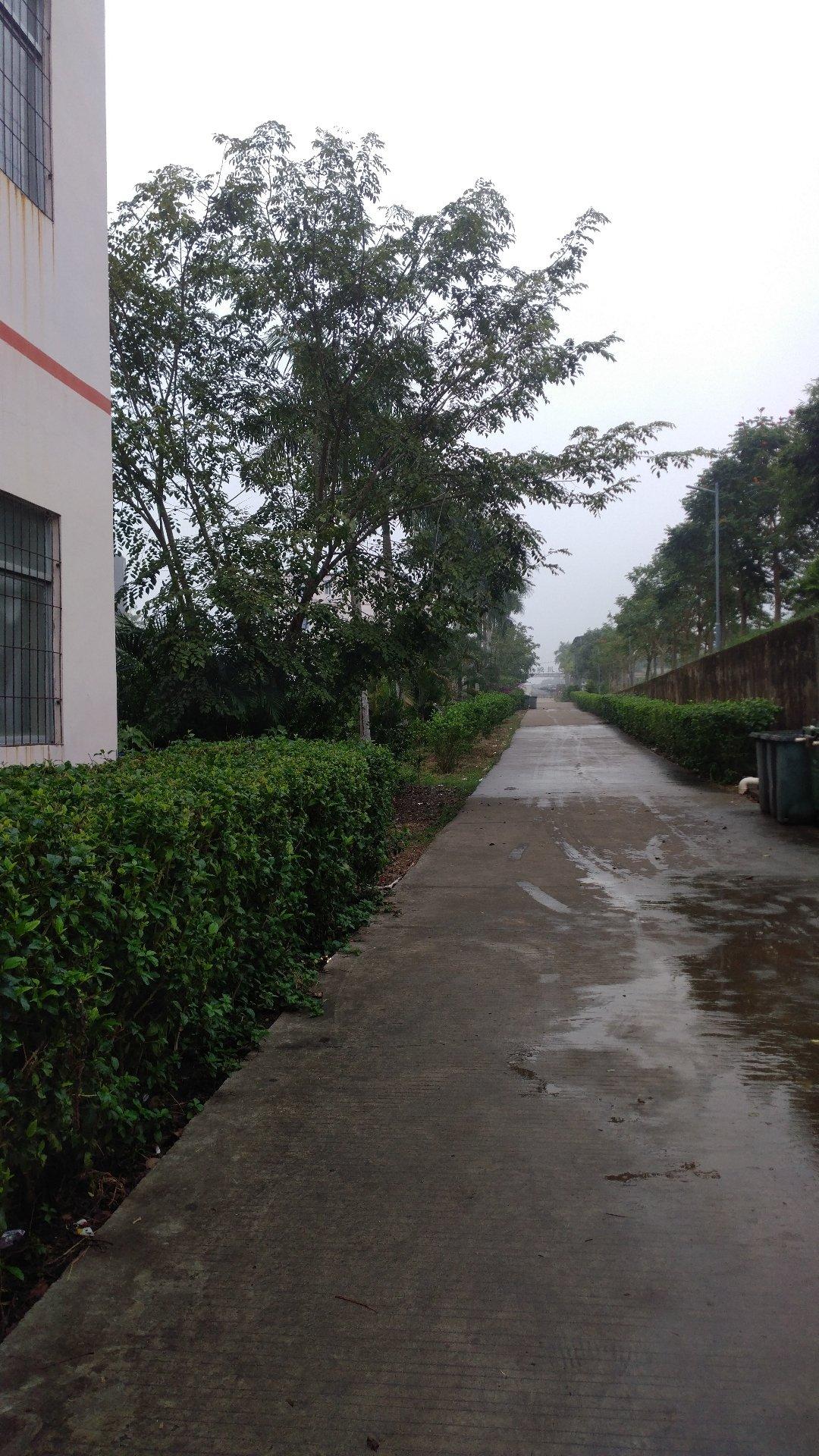 海南省儋州市北部湾大道靠近川绵中学天气预报