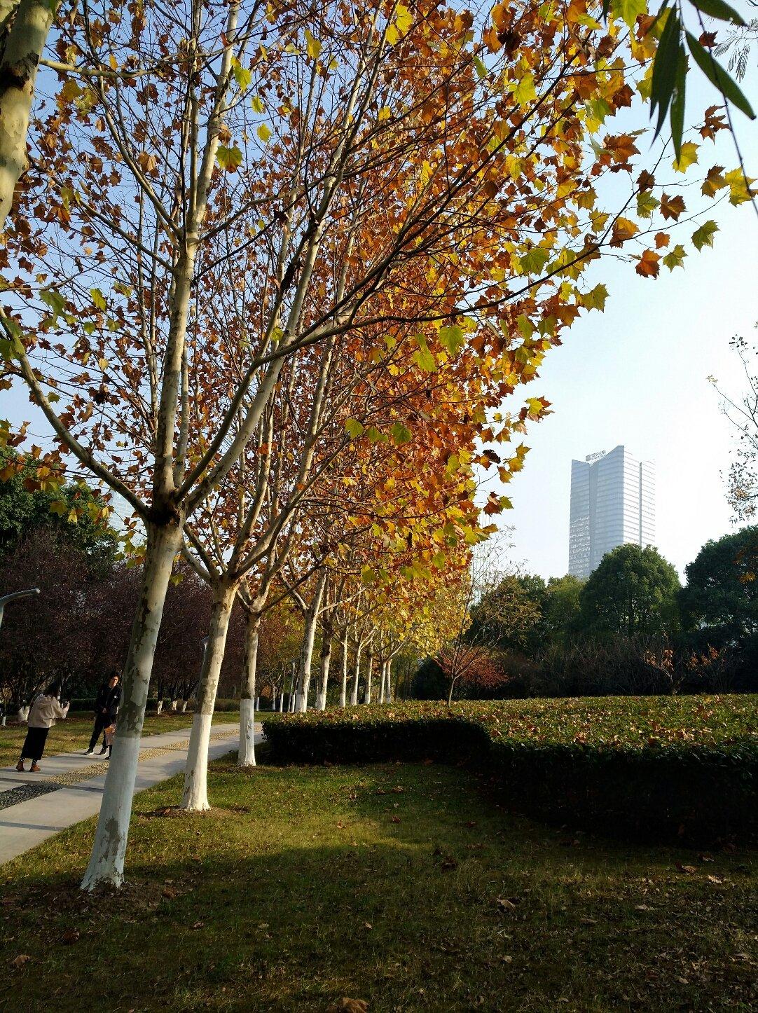 安徽省安庆市桐城市明秀路靠近建安花园(明秀路)天气预报