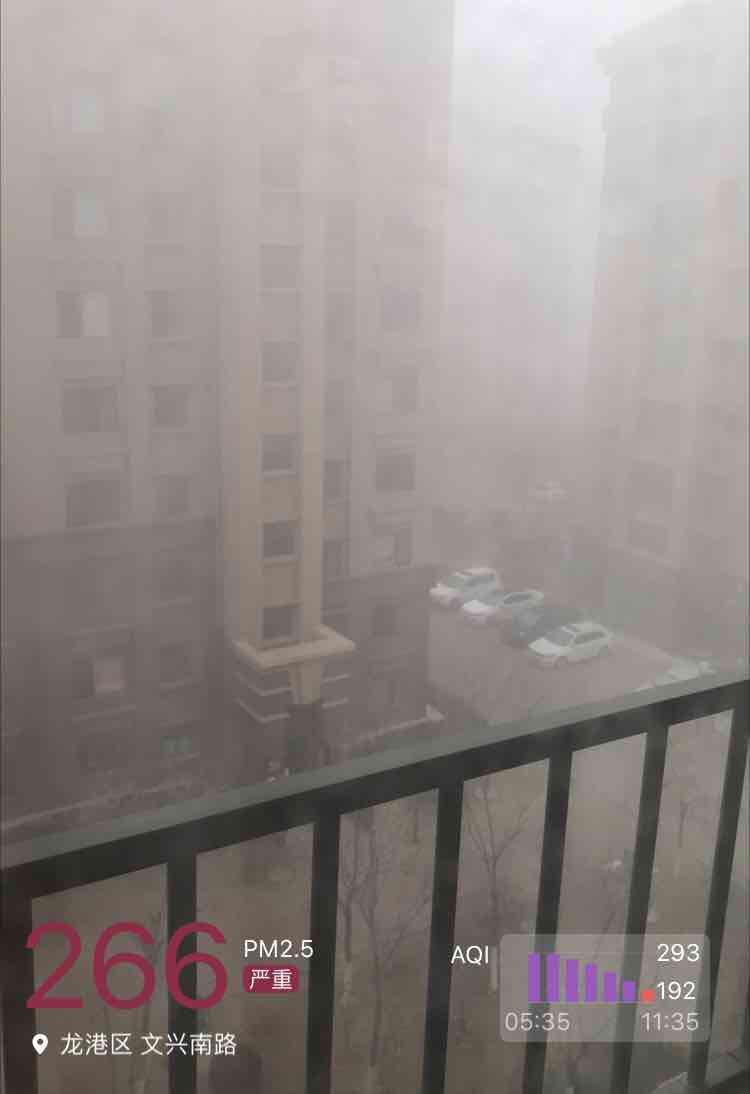龙港区天气预报
