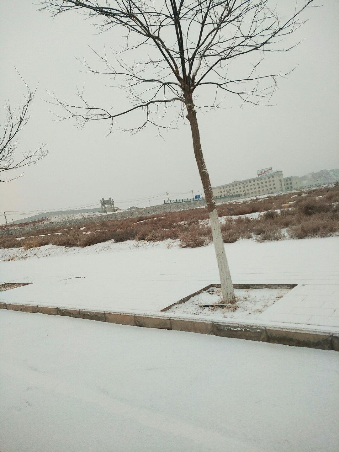 甘肃省白银市白银区晋江路靠近中铁西北科学研究院中兰客专中心试验室天气预报
