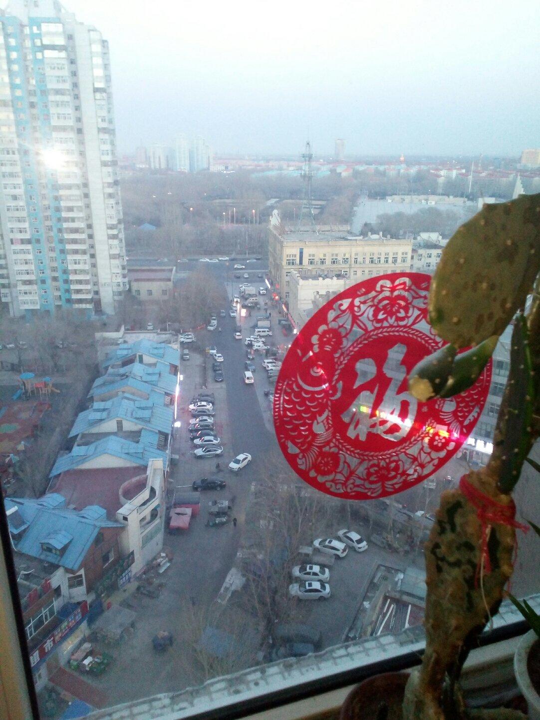 黑龙江省大庆市让胡路区沅江街靠近远望医院天气预报