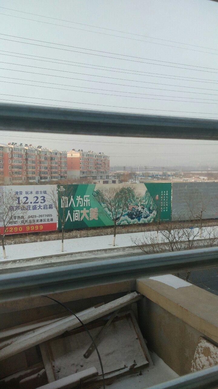 辽宁省葫芦岛市龙港区龙前街靠近仁爱医院天气预报