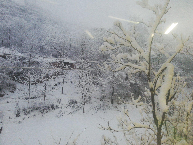 甘肃省陇南市西和县509县道靠近西和县第三中学天气预报