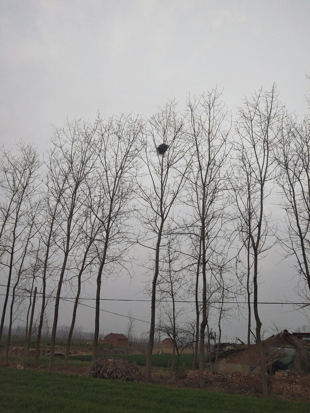 江苏省宿迁市泗洪县526乡道靠近王沟天气预报