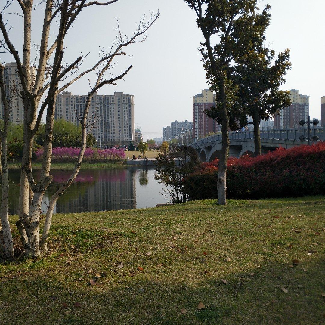 江苏省宿迁市宿城区双庄镇滨河路幸福园林天气预报