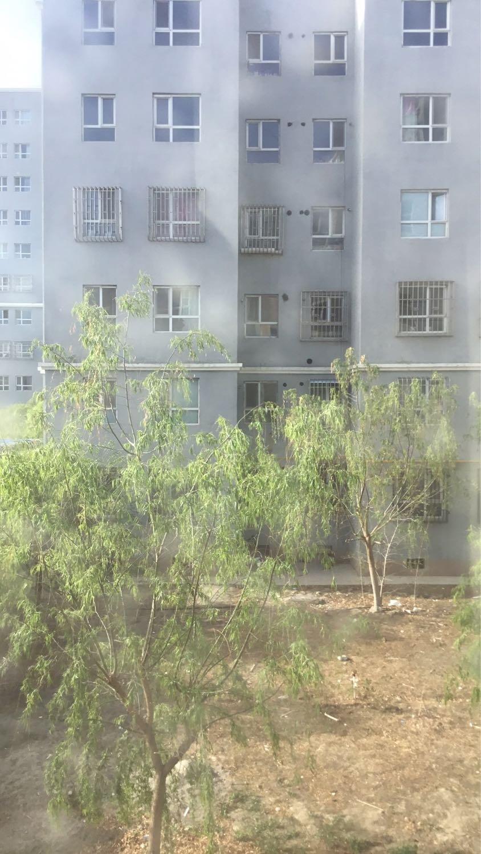 巴音郭楞蒙古自治州和硕县金丝特路天气预报