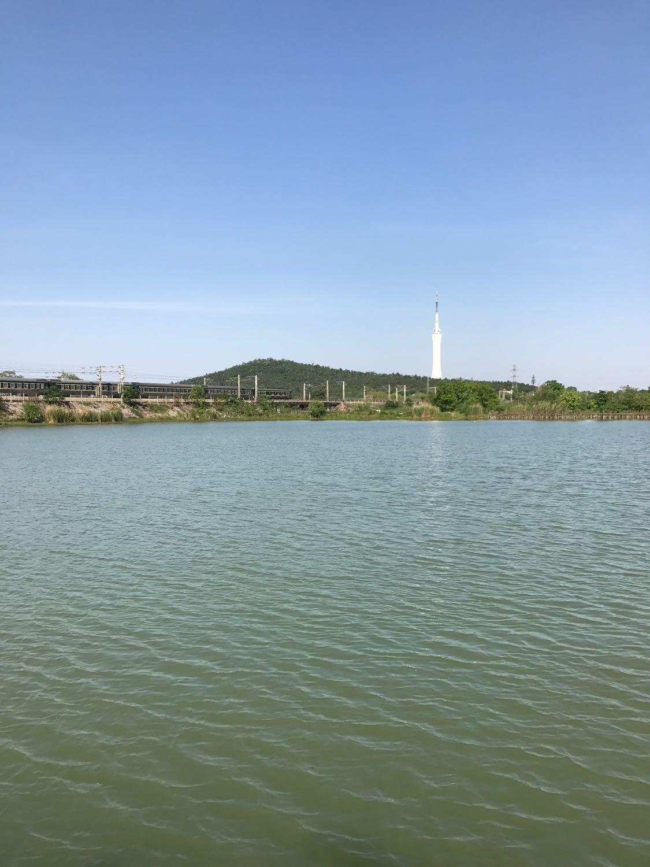 滁州市凤阳县060县道天气预报