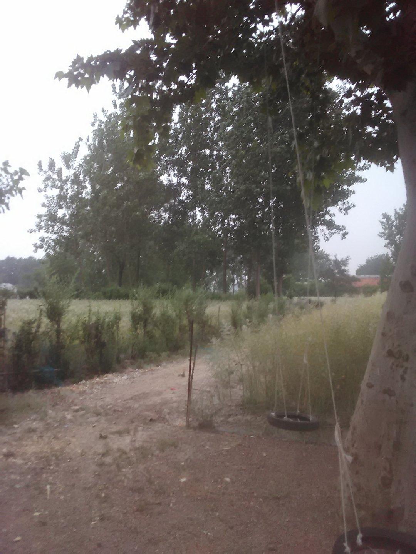 安徽省滁州市定远县024乡道靠近小毛天气预报