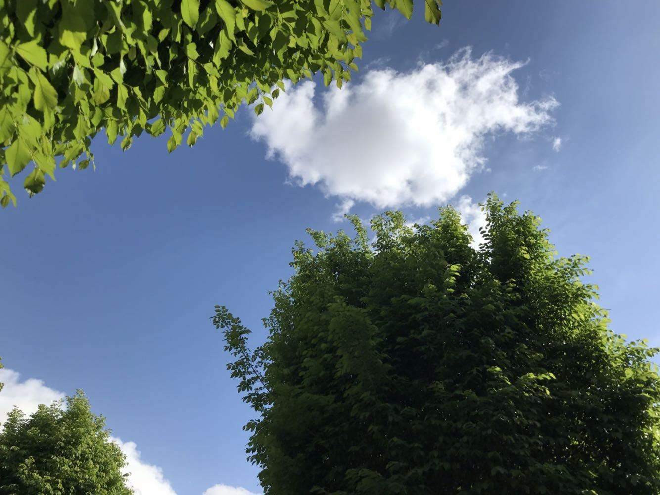 酒泉市敦煌市柴达木中路与跃进路交叉口东北100米天气预报