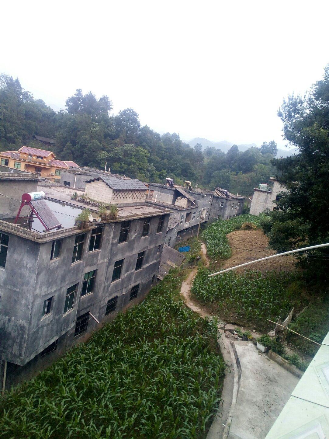重庆市黔江区天平路靠近尤家沟天气预报