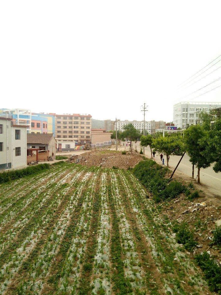 甘肃省天水市张家川回族自治县中城北路靠近张家川回族自治县第一高级中学天气预报