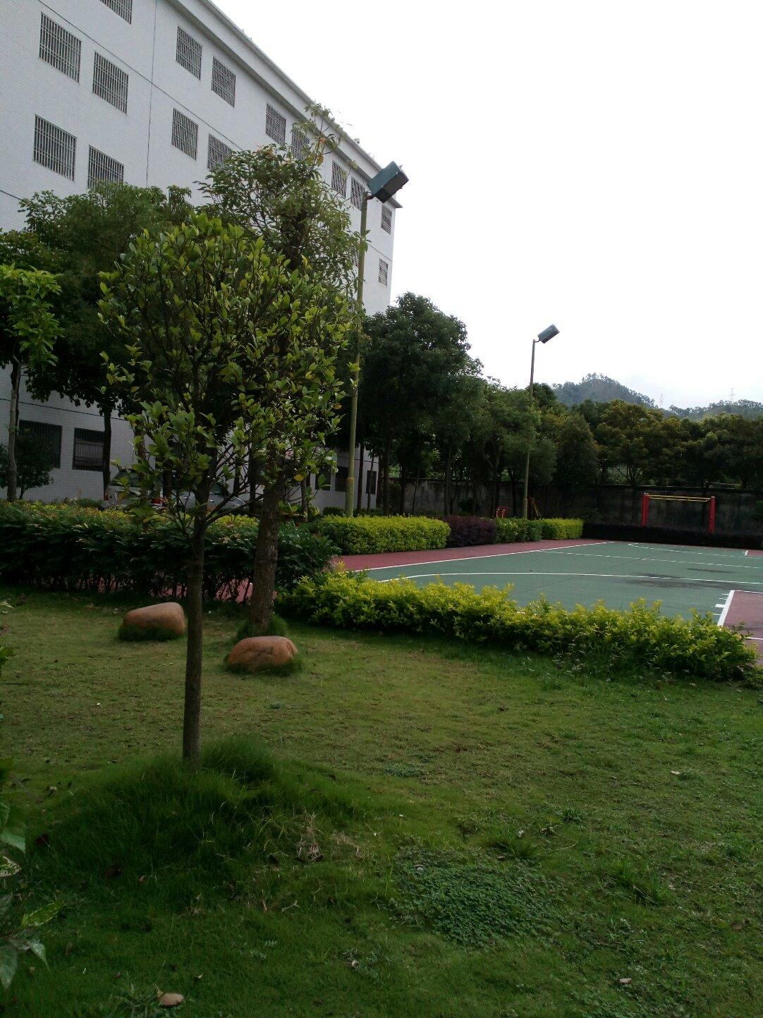 广东省潮州市饶平县高堂大道靠近无穷食品公司员工生活区天气预报