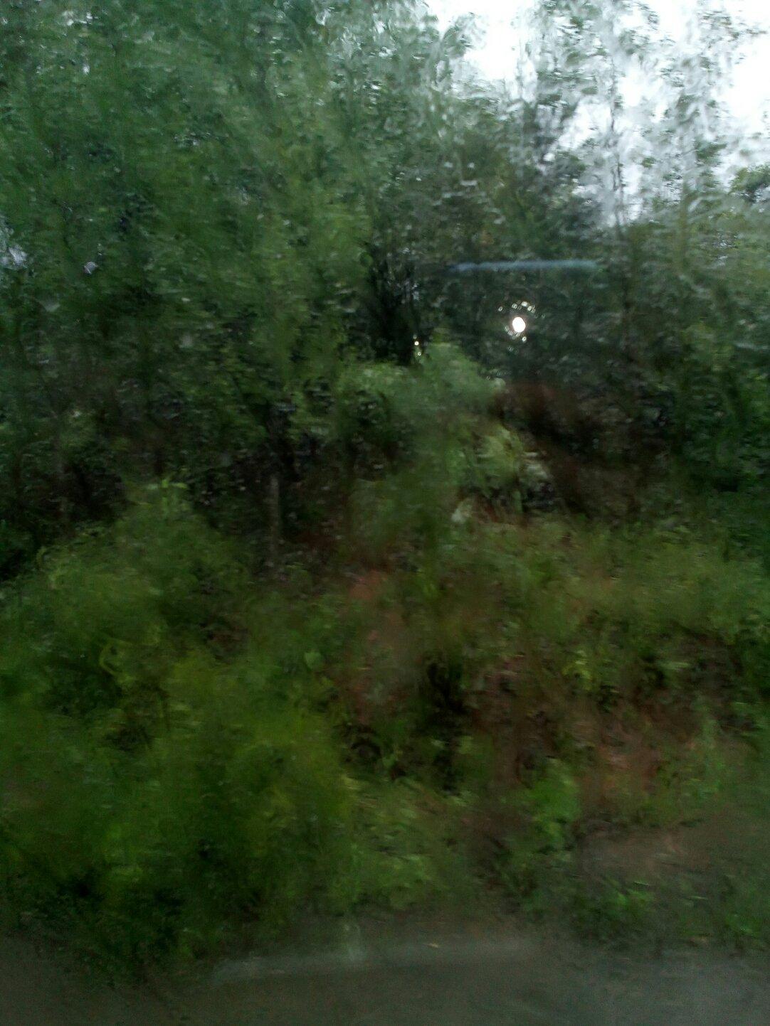 黑龙江省牡丹江市穆棱市206省道靠近亮子河大桥天气预报