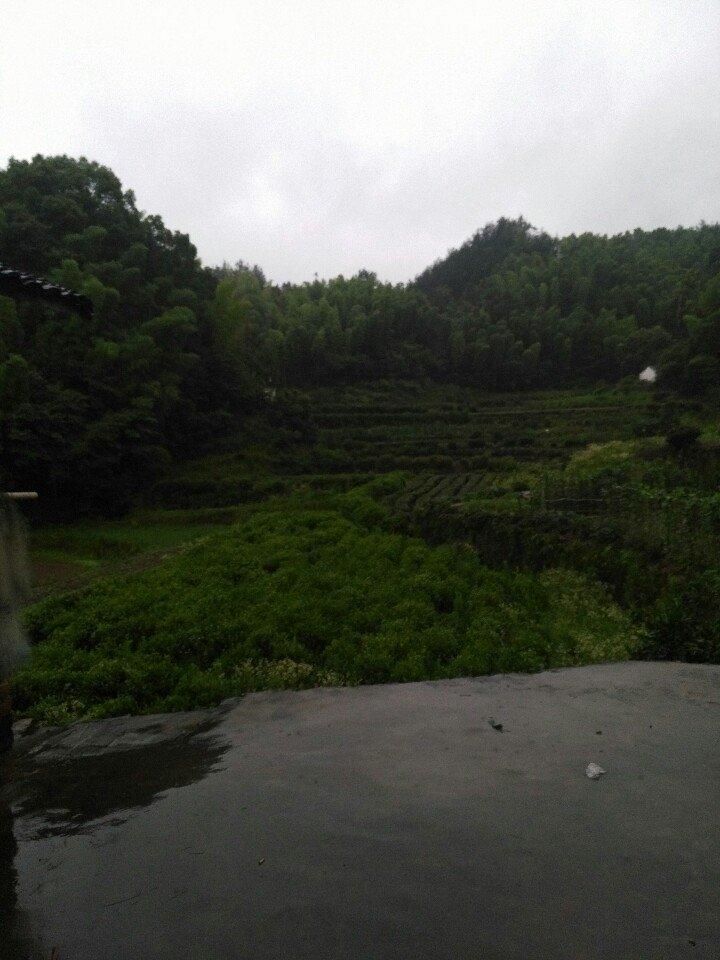 安徽省安庆市潜山市022乡道靠近葛垄天气预报