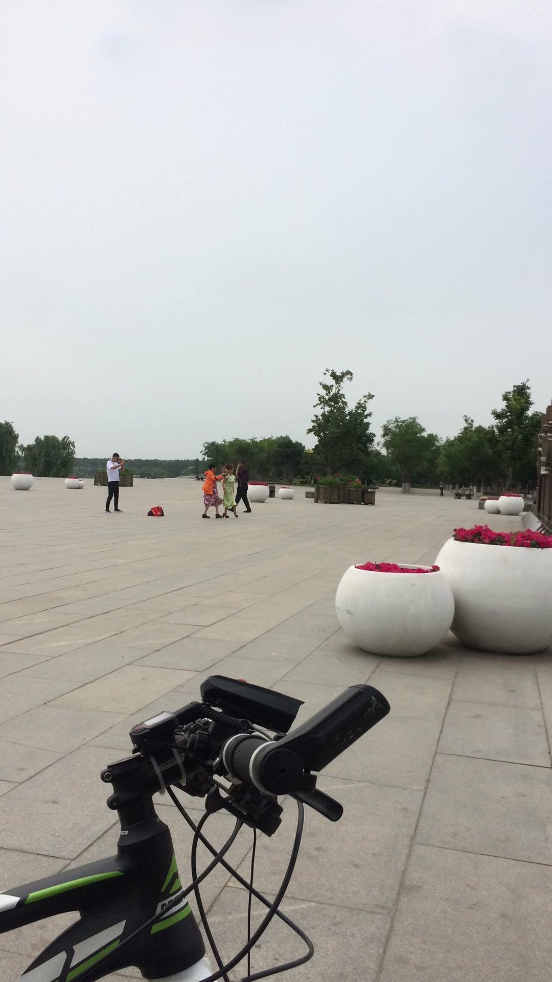 沈阳市铁西区大堤路东50米天气预报