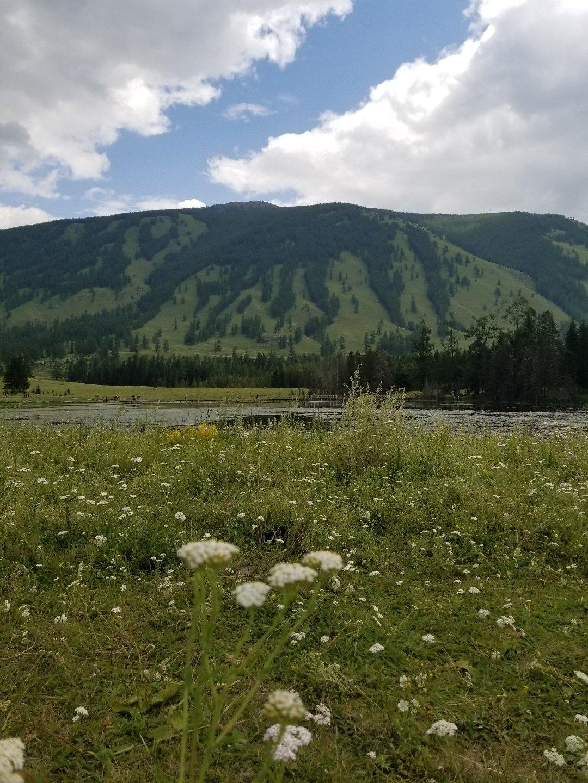 新疆维吾尔自治区阿勒泰地区布尔津县铁喀段靠近新疆·喀纳斯国家地质公园天气预报