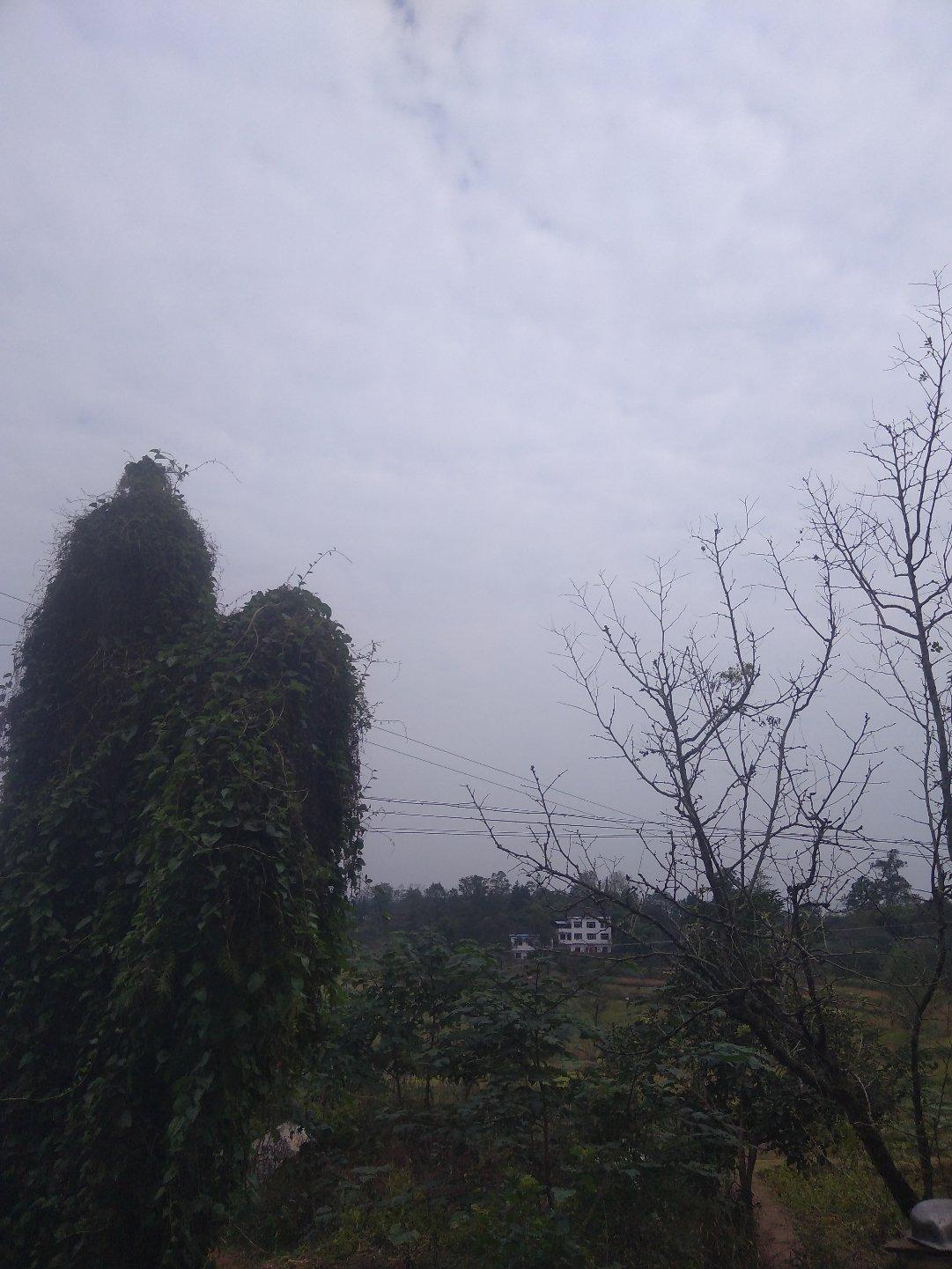 重庆市垫江县007乡道靠近卢家坝天气预报