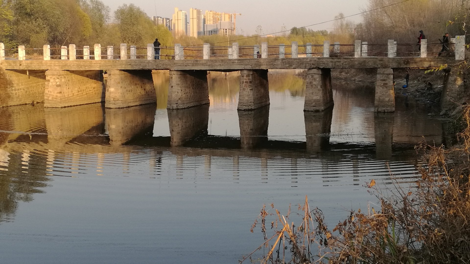 辽宁省沈阳市于洪区造化街道文林苑天气预报